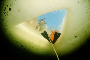 Arctic Diving with Split-Fins™
